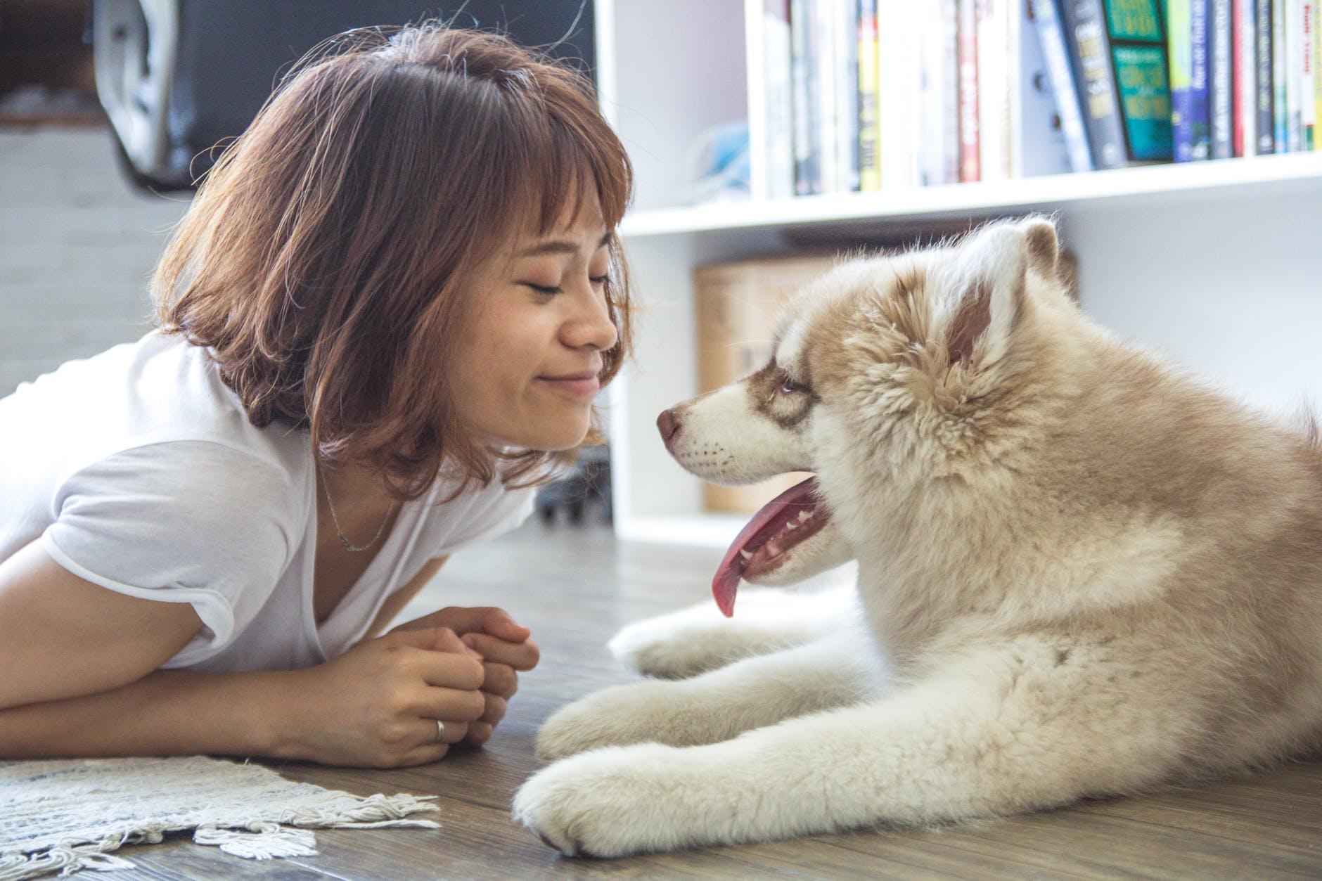 jente foran hund